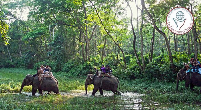 Kathmandu 2N + Chitwan National Park 2N + Pokhara 2N