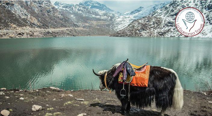Splendour Himalaya (Gangtok 3N)