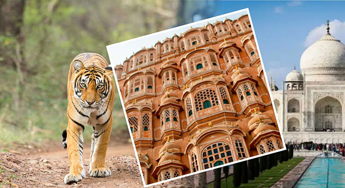 Golden Triangle Packages